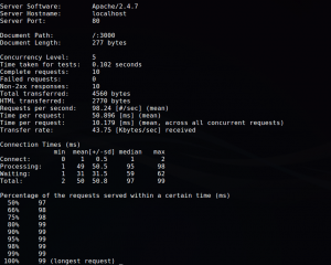 פלט של בדיקת Apache Benchmark Tool