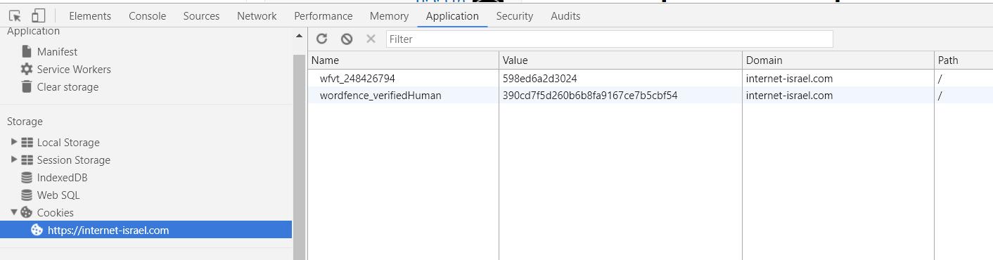 כלי המפתחים - application storage