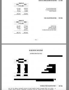 מידע מצונזר בדוחות הכספיים של הדואר