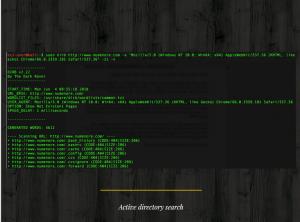 dirb scan - סריקת תיקיות על אתר דוגמה