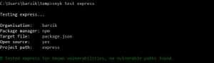 Tested express for known vulnerabilities, no vulnerable paths found.