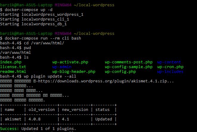 הפעלה של wp cli אחרי שביצענו docker compose