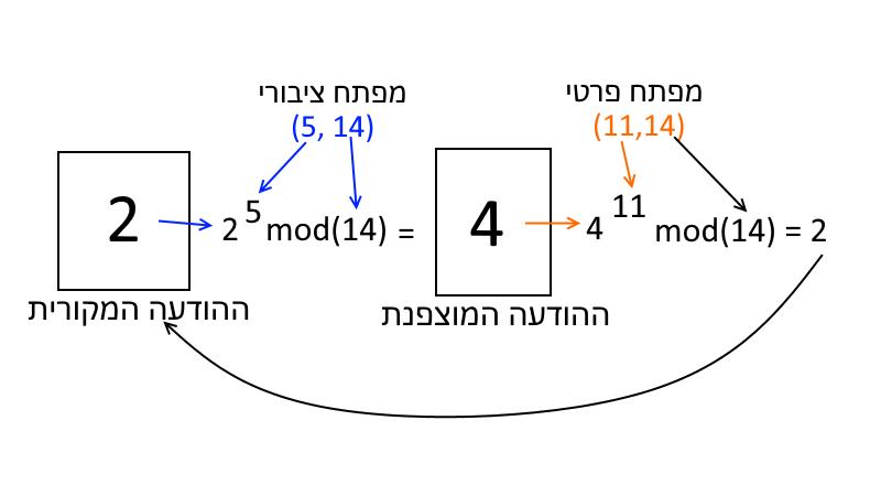 חישוב פרימיטיבי של RSA. מ-2 ל-4.