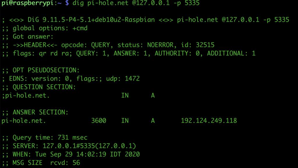 תוצאת בקשת dig דרך שרת DNS מקומי מוצלחת